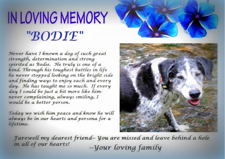 A Tribute To Bodie…