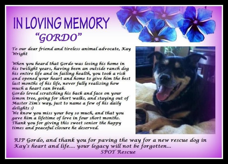 A Tribute To Gordo…