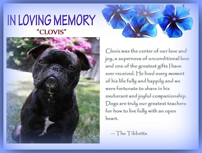 A Tribute To Clovis…