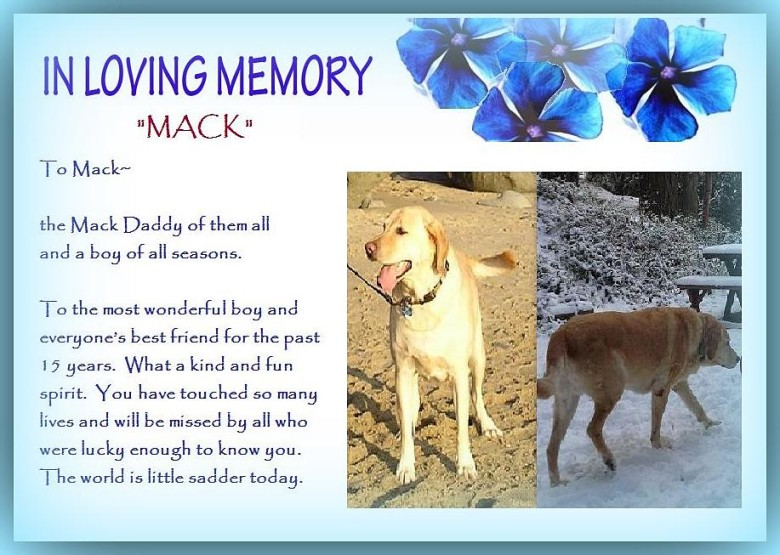 A Tribute To Mack…
