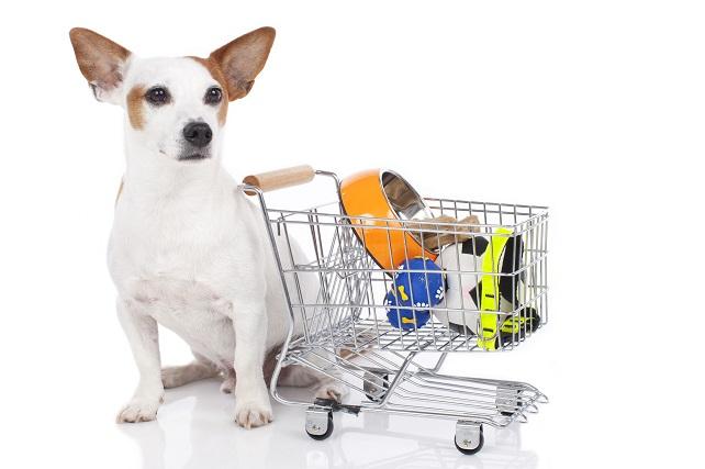 Shop Amazon and save animals!!!