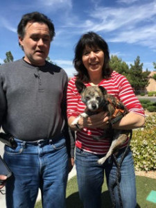Finnegan adopted2