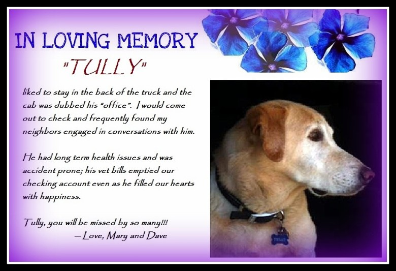 A Tribute For Tully…
