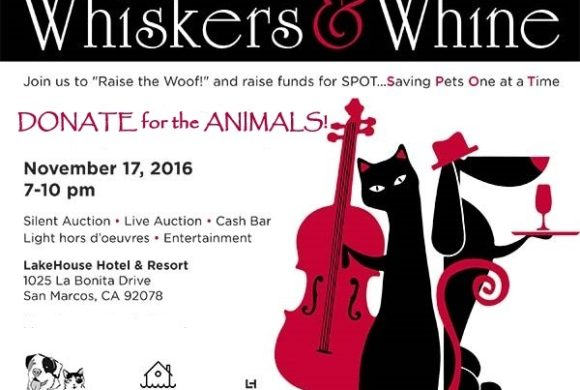 Donate to Whiskers & Whine