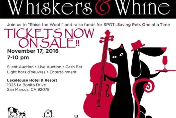 Whiskers & Whine Fundraiser