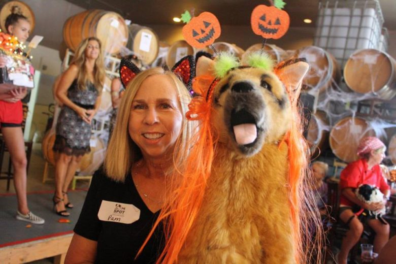 HOWL-o-WINE Party! Huge Success!!
