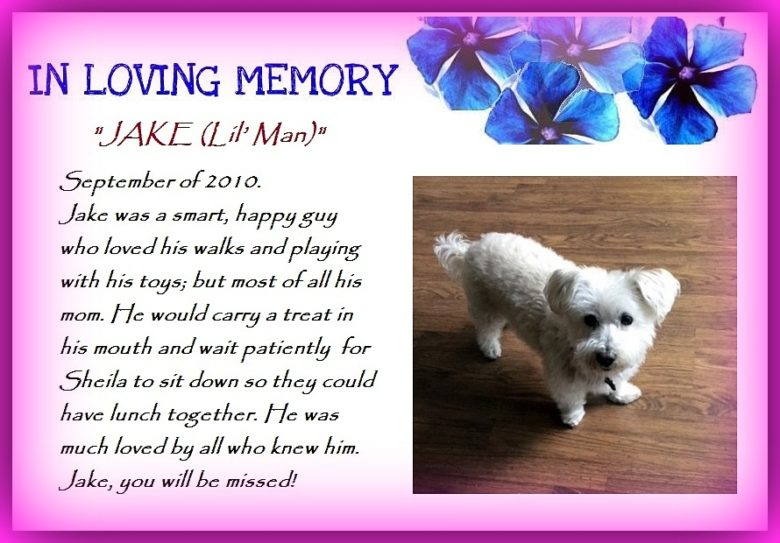 A Tribute to Jake…