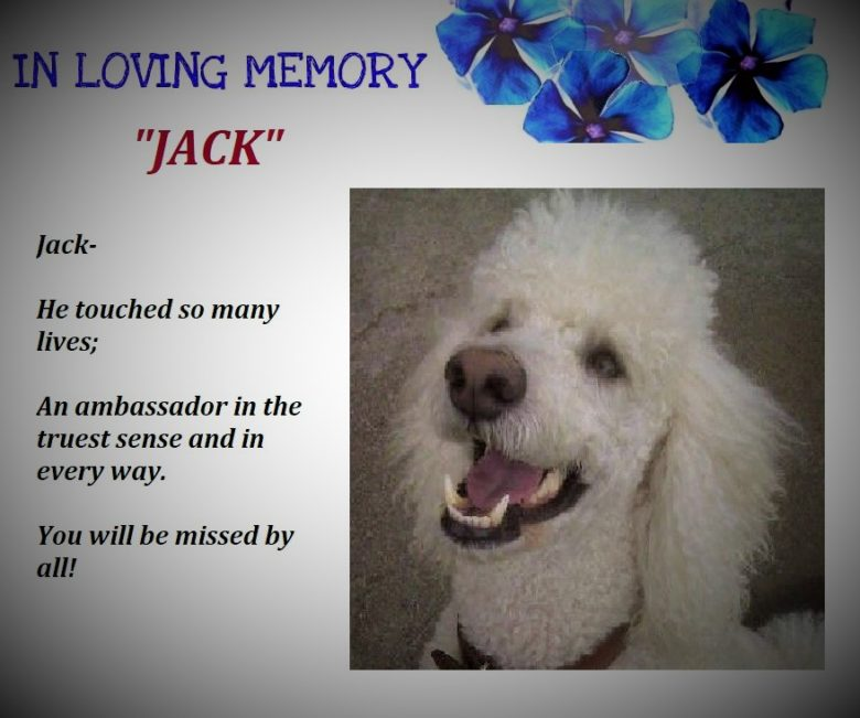 A Tribute to Jack…